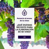 ¿Qué enzimas necesito para la elaboración de mi vino? 🤔🍷 LINK EN BIO. . Dependiendo del estado de la vinificación (clarificación, maceración, potenciar aromas, afinado) te podrán ayudar unas u otras. . 👉 Consulta a nuestros técnicos especializados y no te olvides de ¡potenciar el aroma de los vinos con nuestros nutrientes varietales! . . . #AEB #enzimas #vino #winelovers #wine #vinificacion #viticultura