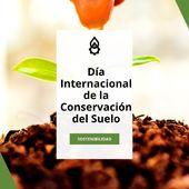 Hoy celebramos el Día Internacional de la Conservación del Suelo🌱. El objetivo es recordar la importancia del suelo y de los beneficios de un manejo y protección adecuados. . Luchemos entre todos para acabar con la contaminación, el cambio climático, la erosión y todas las amenazas medioambientales que puedan dañarlo🌍. . . . #DíadelaConservacióndelSuelo #Suelo #sostenibilidad #cambioclimatico #agriculturasostenible