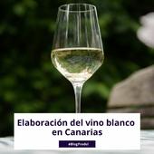 En Prodel, nos apasionamos por tu vino en todo el proceso de elaboración🍷. Llevamos más de 30 años dedicados al sector y ayudando a elaborar los mejores vinos de cada tierra. . En Canarias, contamos con diferentes variedades únicas que permiten elaborar perfiles de vino blanco de alta calidad👌. En el blog de Prodel hablamos de todas las herramientas enológicas y los detalles sobre el proceso de elaboración del vino blanco. 👉 LINK EN BIO . . . #vinoblanco #vinos #winelover #wine #elaboraciondevino #elaborarvino #vino #vinodeCanarias #CanaryWine