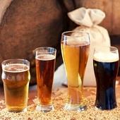 ¿Eres nuevo en el mundo de la #CervezaArtesana? 🍻¿Tienes dudas sobre su procedimiento de elaboración? ¡Pregúntanos a través de nuestro chat o formulario de asesoramiento! . ¡Bienvenido #homebrewer! 😃 . . . #homebrew #cerveza #cervezacasera #cerveceroscaseros #accecerveceros #homebrewing