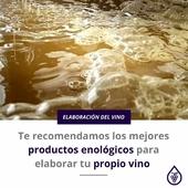 Nuestros enólogos y técnicos te asesorarán en este momento tan importante. 🍷🍇 . Estas son nuestras recomendaciones en productos enológicos.👉 LINK EN BIO - BLOG . ¿Tienes dudas? ¡Consúltanos! 📞 . . . #enologos #asesoramiento #vino #canarywine #winelover #vinos #enologia #tecnicos #Prodel #ProdelAgricola
