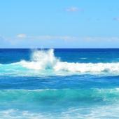Hoy celebramos el Día Mundial de los Océanos🌊. ¿Sabías que el océano cubre más del 70% del planeta?🌎 . En Canarias estamos rodeados del Océano Atlántico, y es por eso que queremos hacer un nuevo llamamiento de apoyo a cuidar de nuestros océanos. ¡Cuidemos de los pulmones de nuestro Planeta! . . . #DíadelosOcéanos #Océanos #OcéanoAtlántico #sostenibilidad #cuidado #medioambiente #planeta