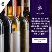 ¡Atención viticultores! 🍇 Han salido las ayudas para el mantenimiento del cultivo de viña destinada a vinos 🍷 con Denominación de Oringen. Campaña 2021 en #Canarias . Más información👉 LINK EN BIO . Ánimo y suerte a todos. . . . #viña #viticultura #viticultores #vinos #wine #CanaryWine #DenominacióndeOrigen #viticultor