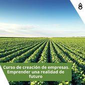 El próximo lunes comienza el curso online 💻 de 'Creación de Empresas, Emprender un realidad de futuro' . ¡Mucha suerte a todos los futuros emprendedores del sector! 🍀 . . . #ExtensionAgraria #CabildoTenerife #AgroCabildo #ProdelInforma #Proyectos #Emprendedores