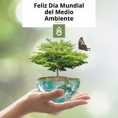 Como cada 5 de junio, hoy celebramos el Día Mundial del Medioambiente🌿🌍. Un momento clave para concienciar sobre el daño medioambiental que sufre la flora y fauna que nos rodea y la importancia de cuidar nuestro ecosistema entre todos. Nuestro futuro depende de las acciones y sostenibilidad en el presente. . Aprovechamos también para ofrecer nuestro apoyo a los daños causados por el reciente incendio de Arico (Tenerife). 🔥 . . . #Medioambiente #ProdelSostenible #Sostenibilidad #Arico #Ecosistema #DíaMundialdelMedioambiente #eco